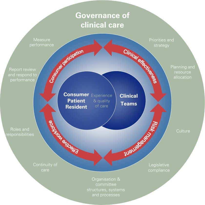 Governance of clinical care Measure Priorities and performance strategy Planning and Report review and respond