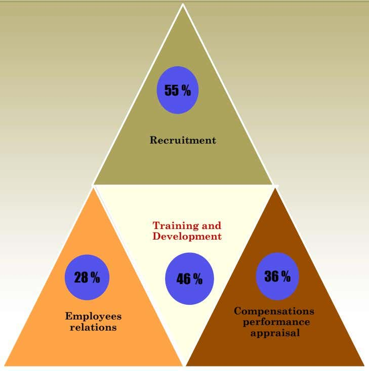 55 % Recruitment Training and Development 28 % 46 % 36 % Compensations Employees performance relations