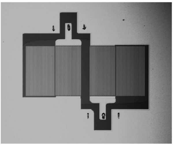 step Bosch process (Fig. 2.1f). In Fig. 2.2 are shown some pictures (top view) of microfabricated