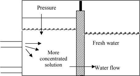 Pressure Fresh water More concentrated solution Water flow