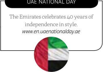 The Emirates celebrates 40 years of independence in style. www.en.uaenationalday.ae