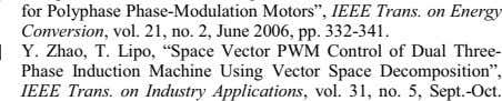 "Induction Machine Using Vector Space Decomposition"", IEEE Trans. on Industry Applications , vol. 31, no. 5,"