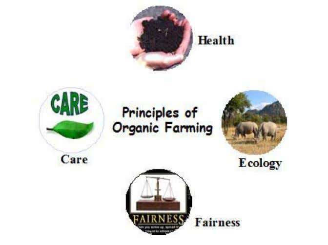 wildlife and natural habitats Principles of Organic Farming The four principles of organic agriculture are as
