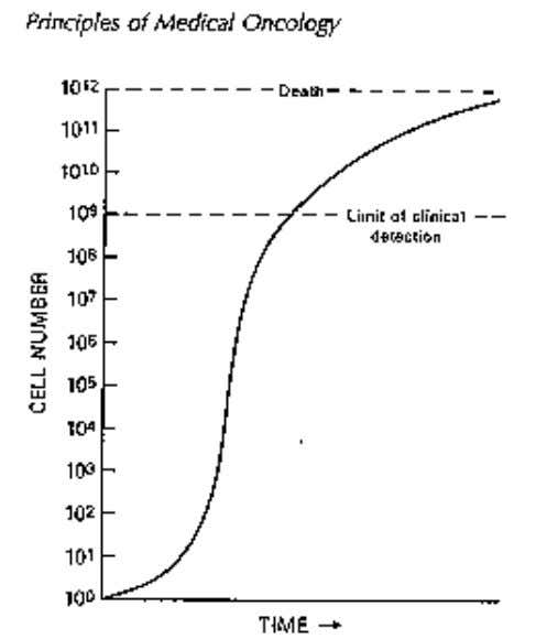 Doença Neoplásica Terapêutica The Gompertzlan growth curve. During the early stages of its development a tumor's