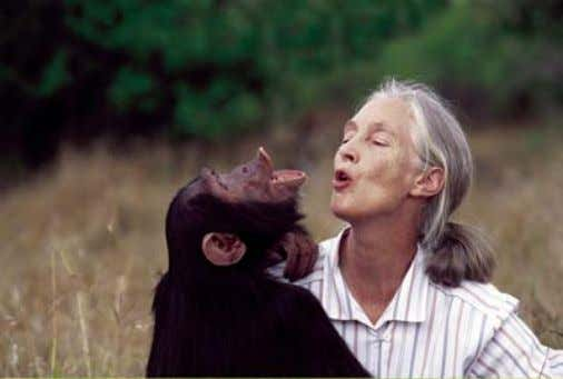 Méthode scientifique Jane Goodall