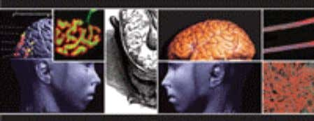 information that is appended at the end of the booklet. Contents Pages 2-61: Neuroscience The Science