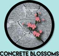 concrete blossoms