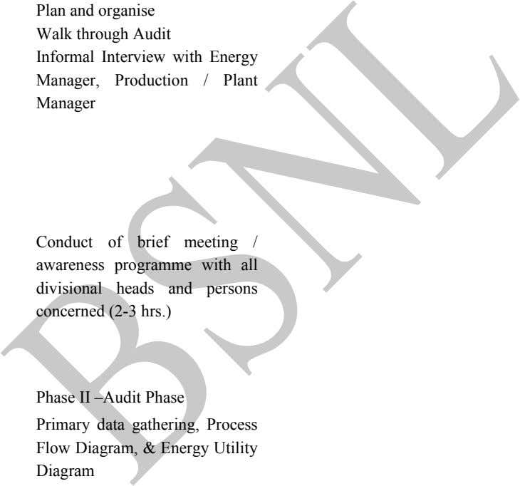 Plan and organise Walk through Audit Informal Interview with Energy Manager, Production / Plant Manager