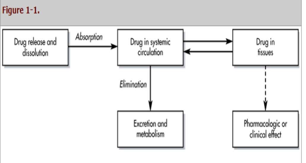 Correlations Biopharmaceutics, Pharmacokinetic and Pharmacology