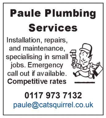 0117 973 7132 paule@catsquirrel.co.uk