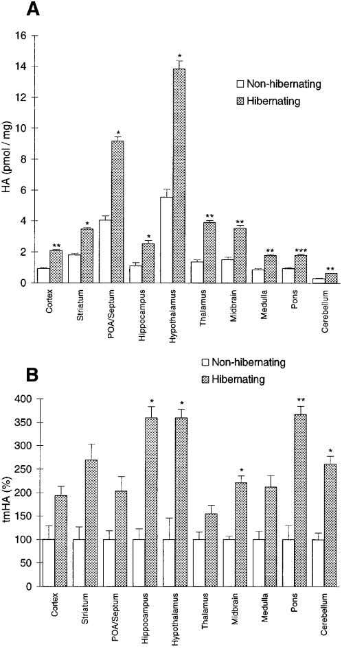 Sallmen et al. ∑ Changes in Brain Histamine During Hibernation J. Neurosci., March 1, 1999, 19
