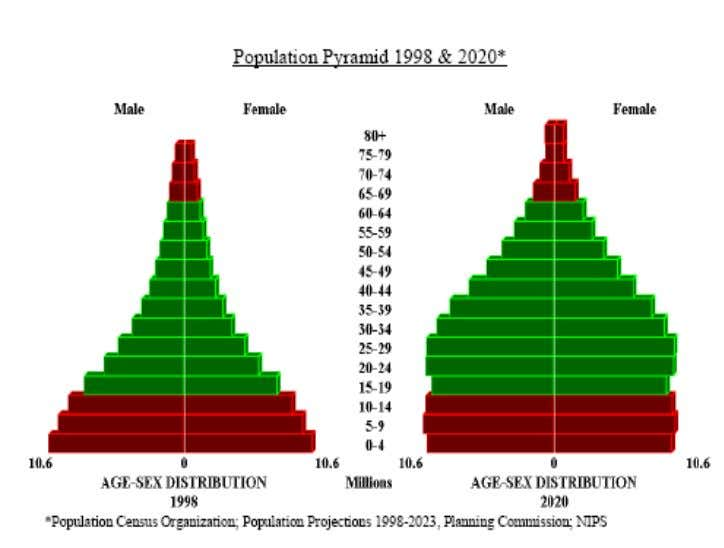 Population Pyramid 1998 & 2020 (projected) for Pakistan: Economies of Scale: Giants like McDonalds and KFC