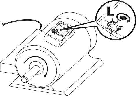 towards the drive shaft. See the Orientation Symbol on the Motor and Phase Rotation indicator. Figure
