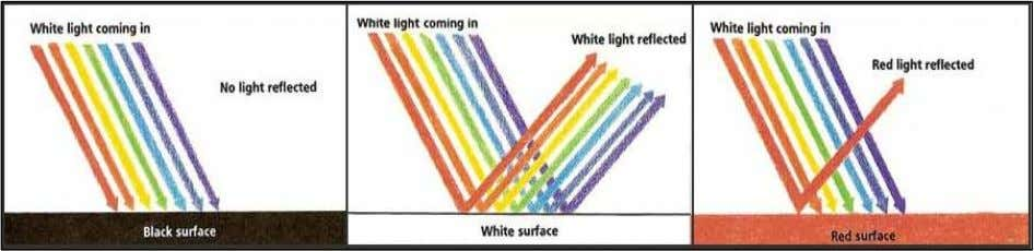 and absorbs most of the other colours (Mather, 2006). Figure 3 – How the reflection/absorption of