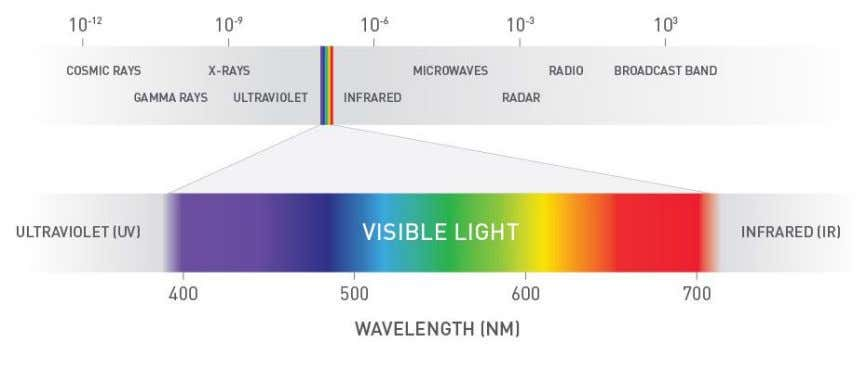 of radiant energy made up of varying wavelengths (Figure 2). Figure 2 – The wavelength (nm)
