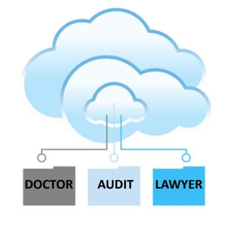 DOCTOR((((((((AUDIT(((((((LAWYER(