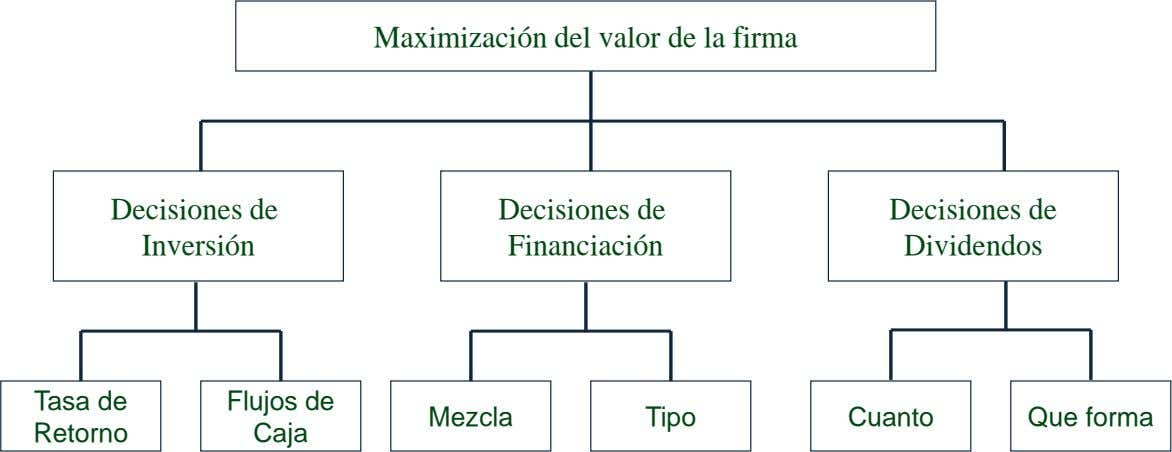 Maximización del valor de la firma Decisiones de Inversión Decisiones de Financiación Decisiones de Dividendos