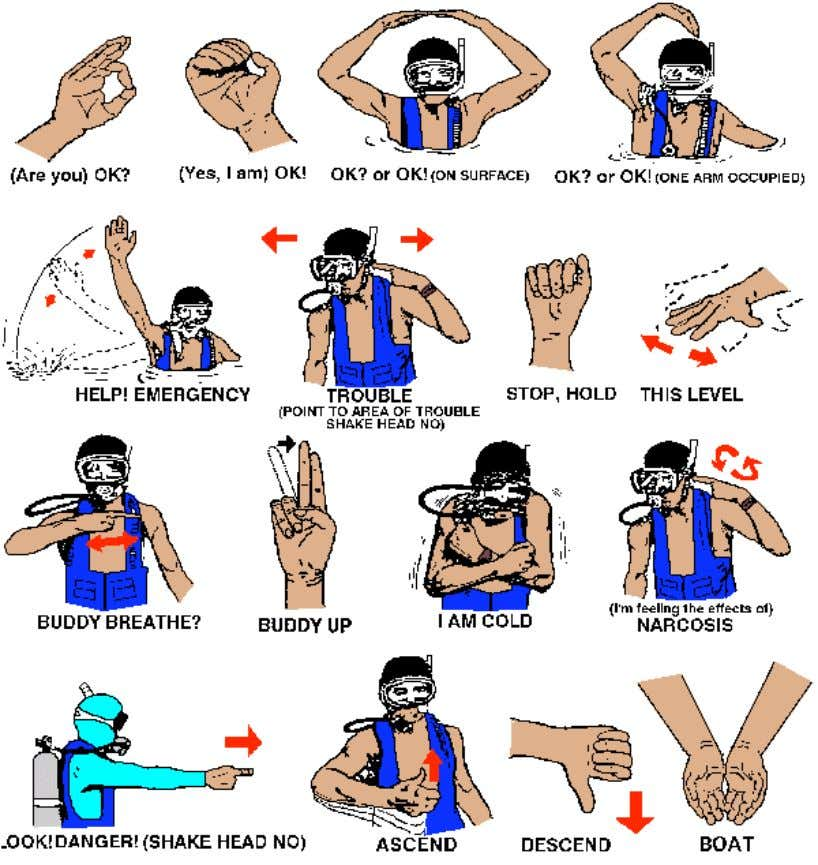 Figure 2: Scuba Diving Hand Signals 7