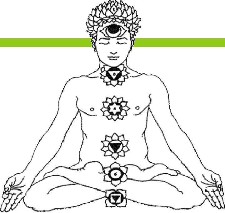 The Chakras (Cont'd) Each Chakra has a beej mantra , a seed vibrational sound represented