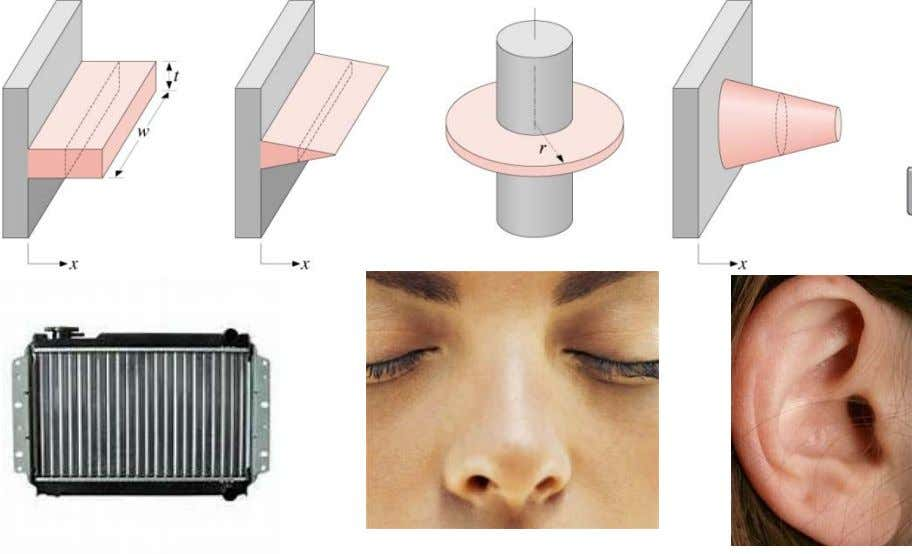 convection) or A (using fins). Examples include: • Automobile radiators • Ears and nose • Finned