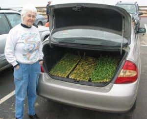 with a trunk full of plants ready to use for restoration. In January and February, when