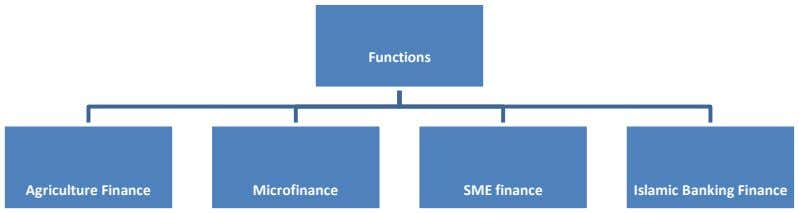Functions Agriculture Finance Microfinance SME finance Islamic Banking Finance