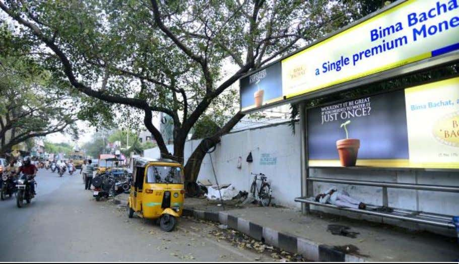 Exhibit 3 Bus stand and the tree where Chaudhary was hit on his head Exhibit 4