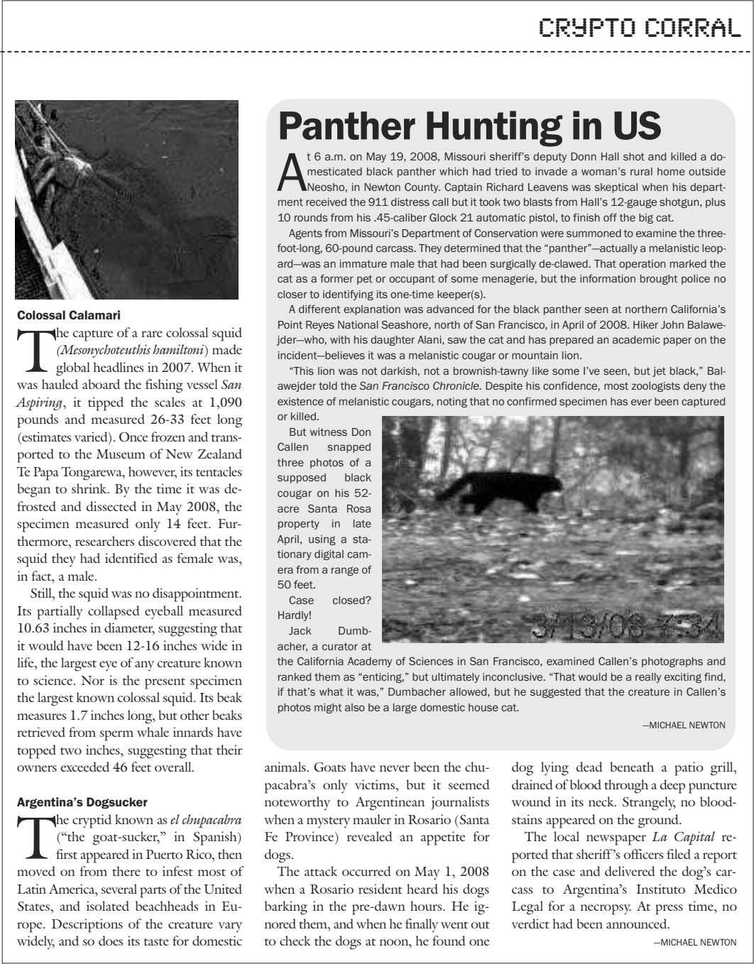 crypto corral Panther Hunting in US A t 6 a.m. on May 19, 2008, Missouri