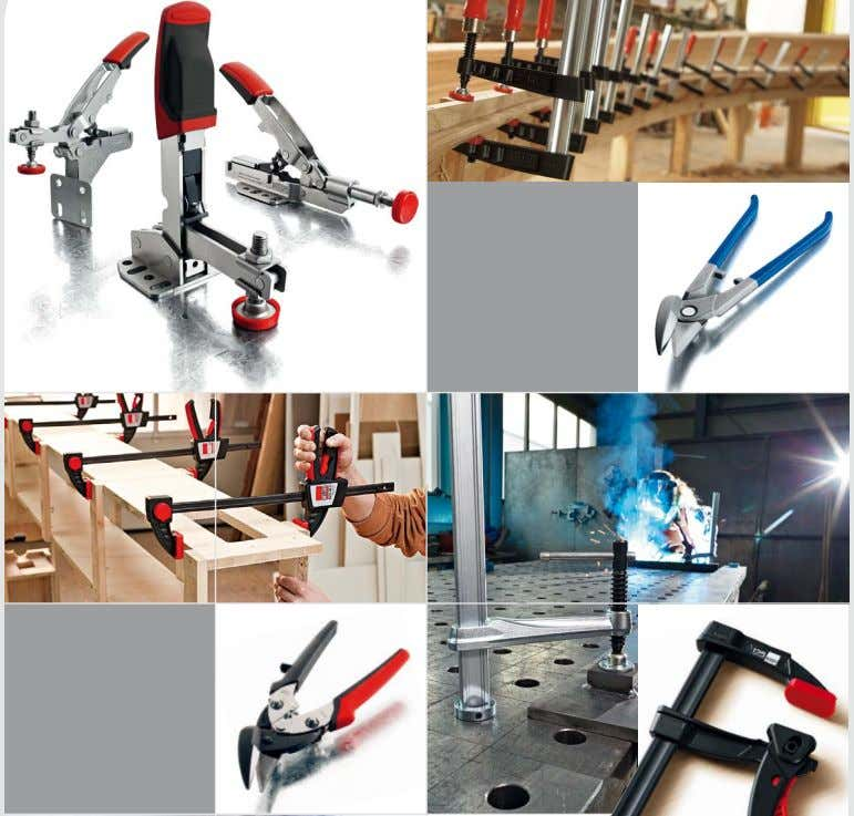 Complete catalogue Complete catalogue 2014/2015 2014/2015 Years of 125 edition BESSEY Anniversary Page 37