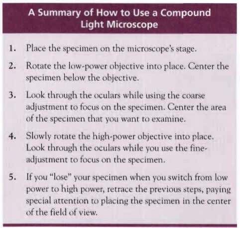 A Summary of How to Use a Compound Light Microscope 1. Place the specimen on