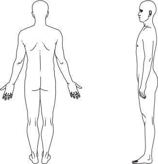 Anatomical position. Fig. 1.7b Anterior aspect of body. Fig. 1.7c Posterior aspect of body. Fig. 1.7d
