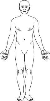 F i g . 1 . 7 a Anatomical position. Fig. 1.7b Anterior aspect of