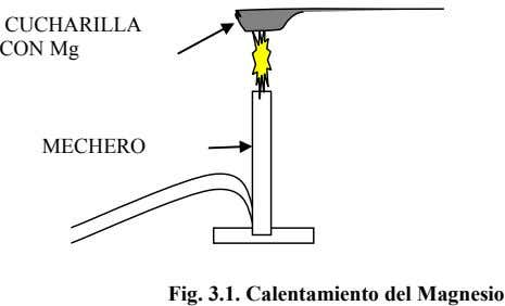 CUCHARILLA CON Mg MECHERO Fig. 3.1. Calentamiento del Magnesio
