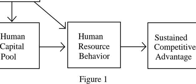 Human Human Sustained Capital Resource Competitive Pool Behavior Advantage Figure 1