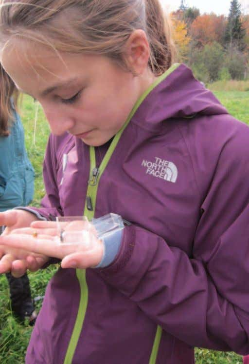 a student examines a specimen during science class out in the field. Photo courtesy of