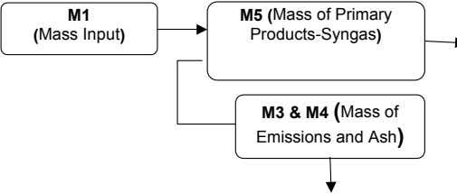 M1 (Mass Input) M5 (Mass of Primary Products-Syngas) M3 & M4 (Mass of Emissions and