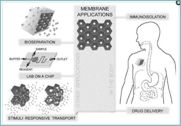 Only in the US, the medical membrane market approaches 1.5 billion dollars per year and grows