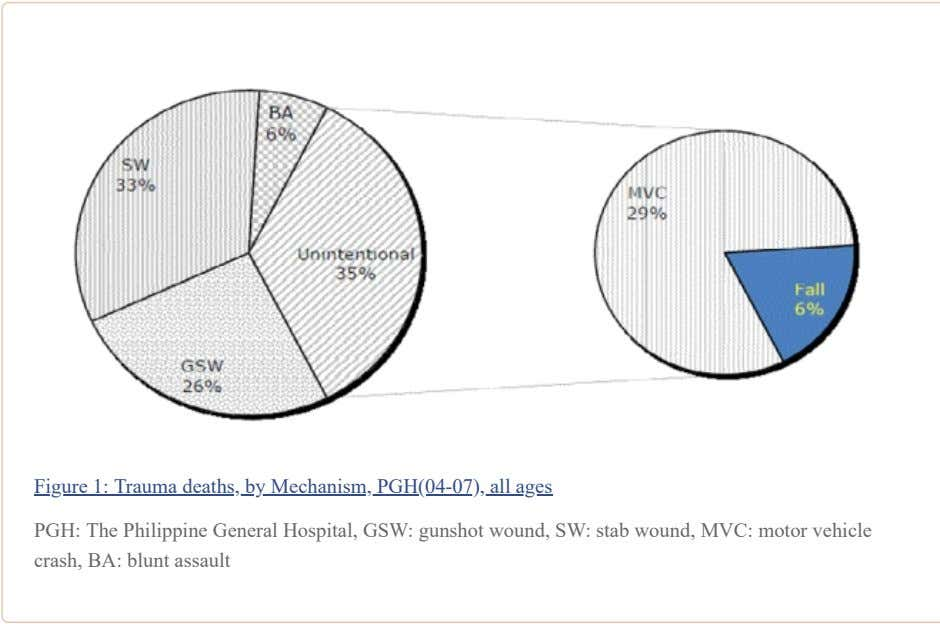 Figure 1: Trauma deaths, by Mechanism, PGH(04-07), all ages PGH: The Philippine General Hospital, GSW: