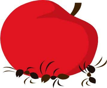 ants on the apple eh, eh, eh ants on the apple eh, eh, eh eh