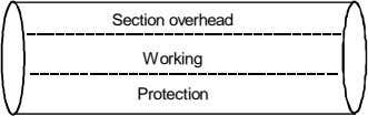 Section overhead Working Protection