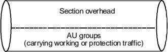 Section overhead AU groups (carrying working or protection traffic)