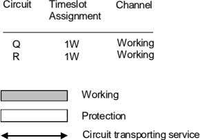 Circuit Timeslot Channel Assignment Q 1W Working R 1W Working Working Protection Circuit transporting service