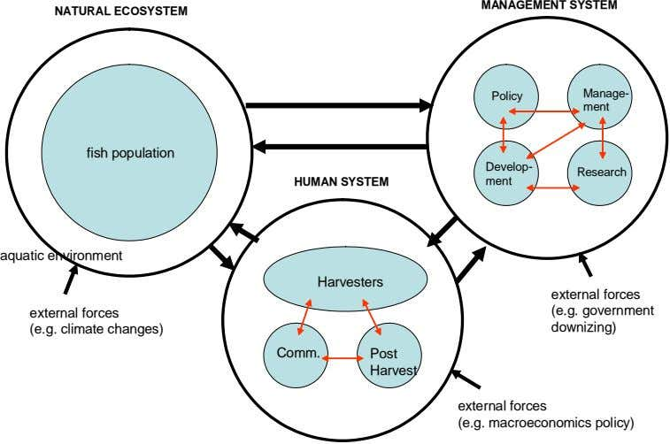 MANAGEMENT SYSTEM NATURAL ECOSYSTEM Manage- Policy ment fish population Develop- Research HUMAN SYSTEM ment