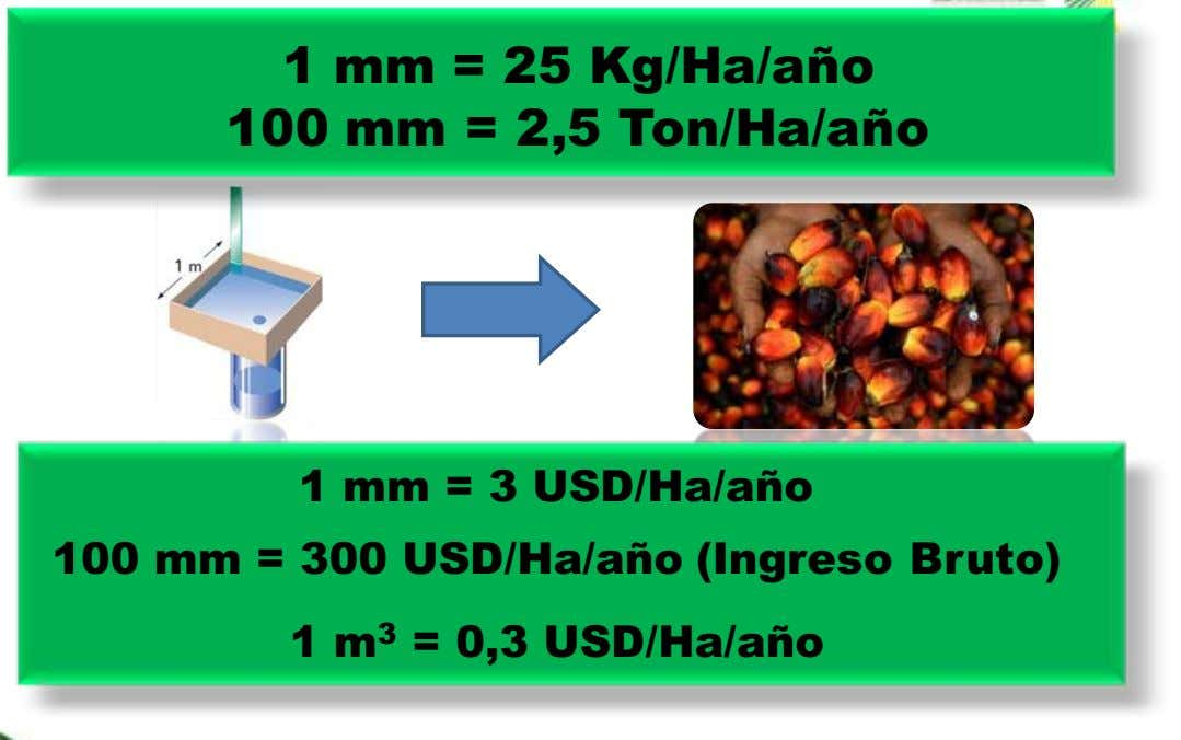 1 mm = 25 Kg/Ha/año 100 mm = 2,5 Ton/Ha/año 1 mm = 3 USD/Ha/año