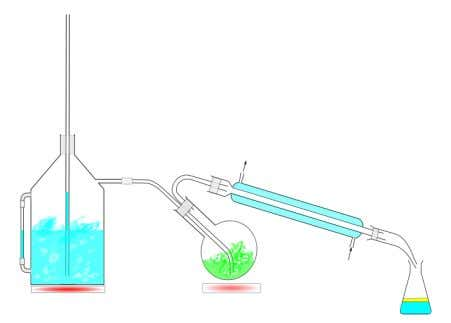 between the compound being steam distilled and with water. Figure 3. A typical steam distillation set-up