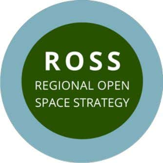 off some of ROSS's key findings, including the need for a coordinated, spatial vision of open
