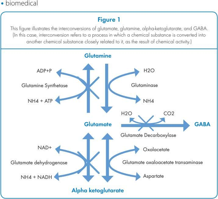 ! biomedical Figure 1 This figure illustrates the interconversions of glutamate, glutamine, alpha-ketoglutarate, and