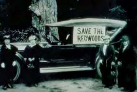 Society Get Active Saving the Coast Redwood Forest Learn More Visit the Save the Redwoods League