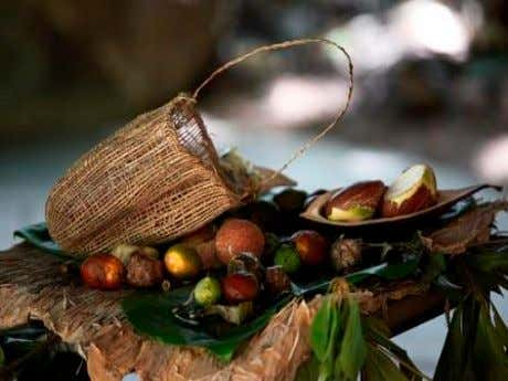 worship of the whole environment of their traditional area. Traditional medicinal plants Photo by Steve Evans