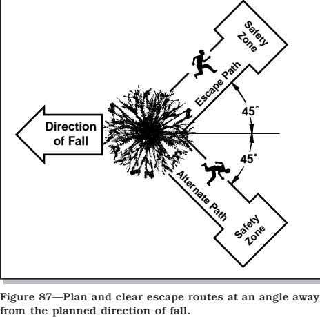Safety Zone Alternate Path 45˚ Direction of Fall 45˚ Figure 87—Plan and clear escape routes